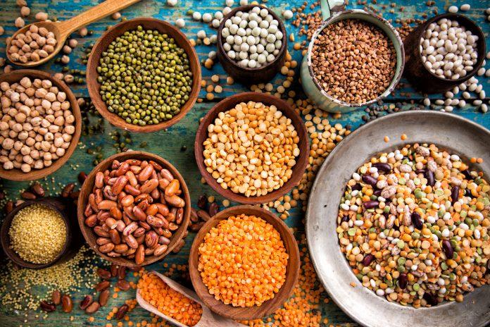 genetic resources, legume